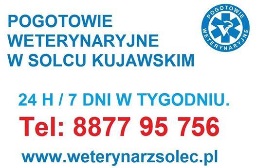 10521655_762329713810523_1291076464418262887_n